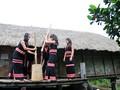 ソダン族の新米祭り