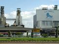 Perusahaan CPV-Pola produksi pertanian yang sukses di Vietnam