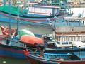 Provincias costeras de Vietnam se preparan para aminorar las consecuencias del tifón Kirogi