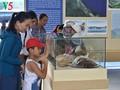 Ausstellung zur Ehrung der kulturellen Werte des Meeres und der Inseln Vietnams