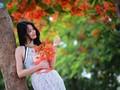 Hà Nội rực rỡ hoa mùa hạ