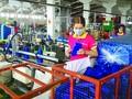 Consolider les liens entre les entreprises vietnamiennes et les IDE