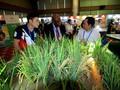 APEC 2017: Vernissage d'une exposition sur l'agriculture