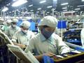 Mehr Wertschöpfung für die vietnamesischen Kleinst-, kleinen und mittleren Unternehmen