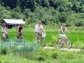 Ciudad vietnamita de Ha Long acogerá Diálogo de alto nivel sobre turismo sostenible de APEC
