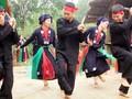 Vietnam respalda la promoción de los derechos humanos y la diversidad cultural