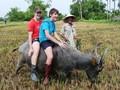 Penjelasan singkat tentang jasa homestay di Vietnam