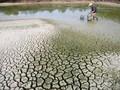 Vietnam bersama-sama dengan komunitas internasional aktif menanggulangi perubahan iklim