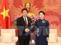 Вьетнам желает развивать и углублять всесторонние отношения с Японией