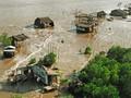 Trồng rừng ngập mặn thích ứng với biến đổi khí hậu