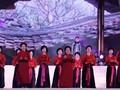 Trả lời thính giả về một số nét văn hóa của Việt Nam như đàn đá, bảo tồn các lễ hội truyền thống