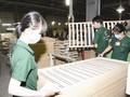 EU hoan nghênh lộ trình thông qua các công ước về lao động của Việt Nam