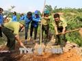 Việt Nam hưởng ứng Ngày thế giới phòng chống sa mạc hóa