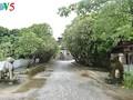 Hung Yen, an attractive destination