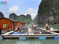 Fischer in Halong-Bucht leben im Einklang mit dem Meer