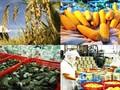상품 거래소, 베트남 농산물의 기회