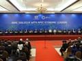 АТЭС 2017: мировая общественность высоко оценивает роль Вьетнама в качестве страны-хозяйки