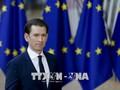 Тяжёлый срок для Австрии в качестве председателя Совета ЕС
