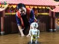 Phan Thanh Liêm, un talentueux marionnettiste
