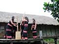 La fête du riz nouveau des Sedang