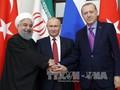 Sommet tripartite sur la Syrie : une étincelle d'espoir