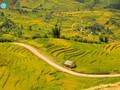 西北地区稻熟季节令人惊叹的美景
