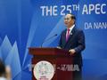 25. Gipfeltreffen der APEC-Staats- und Regierungschefs verabschiedet Da-Nang-Erklärung