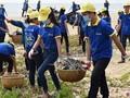 Vietnamesische Jugendliche engagieren sich aktiv im Umweltschutz