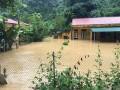 Oficina del Presidente de Vietnam apoya a compatriotas afectados por inundaciones en la zona norteña