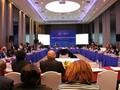 Inaugurada la II Reunión del Grupo Sanitario de APEC