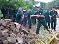 Localidades centrales de Vietnam superan consecuencias del huracán Doksuri