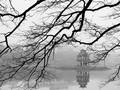 Canciones sobre el invierno
