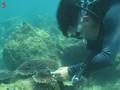 Semillero de brote verde en el fondo del mar