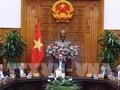 Gobierno vietnamita analiza soluciones al crecimiento de producción y comercio