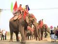 Organizan competición de elefantes en el marco del Festival de Café de Buon Ma Thuot
