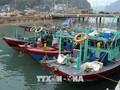 Interdiction de la pêche dans la baie d'Halong à partir du 1er octobre