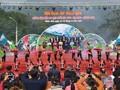 Фестиваль камелии сасанквы - интересное туристическое мероприятие в Куангнине