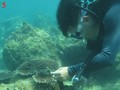 Korallen im Meeresgrund