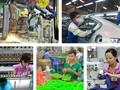 Vietnamese enterprises make the most of EVFTA