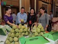 無農薬農産物の輸出を推進するソンラ省