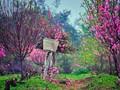 春の雰囲気溢れる歌