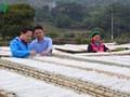 経済発展を励む山間部の青年たち