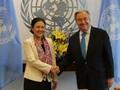 ベトナム、安保理非常任理事国として国際社会に貢献
