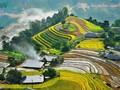 ベトナムの旅行会社 サービスの質的向上に努力