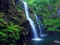 Taman Nasional Phong Nha-Ke Bang- destinasi yang menarik bagi para wisatawan