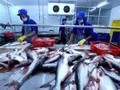 Exportation de produits aquatiques : le Vietnam cible 10 milliards de dollars en 2019