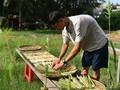 Trân Minh Tiên : la passion de l'écologie