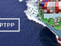 CPTPP、発展のチャンスと試練