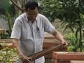 山萝省老农靠驯养蜜蜂收入不菲