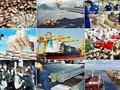 国际友人对越南经济做出乐观认定